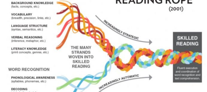 Let's talk about it…The Science of Reading